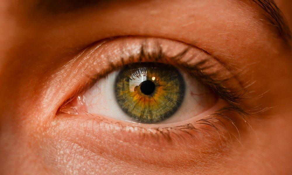 Oczy to fantastyczny organ. To dokładnie dzięki nim odczuwamy.